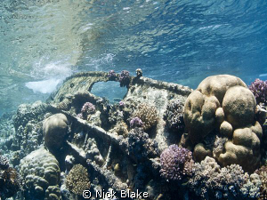 The remains of the bows of a Tug Boat which have become p... by Nick Blake