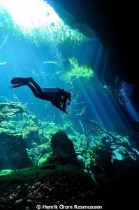 Diver at Ponderosa by Henrik Gram Rasmussen