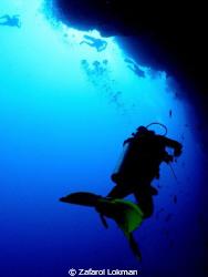 yellow fin diver by Zafarol Lokman