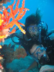 """Students Taken in St. Lucia on Wreck called Lesleen """"M"""" by Marcus Joseph"""