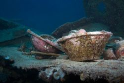 Galley items from the Hanakawa Maru, Truk Lagoon. Shot wi... by Kenneth Mostello