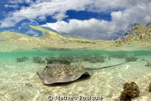 Rangiroa atoll by Mathieu Foulquié