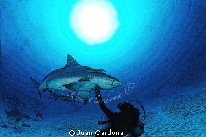 scrash my belly by Juan Cardona