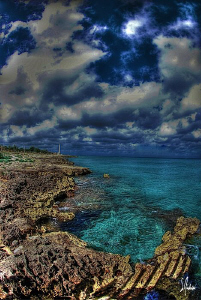 Oh Cozumel ....I can hear the island calling me....a litt... by Steven Anderson