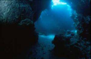 Cave Nikonos III &12mm Sea&Sea (south Red Sea) by Hossam M. Nasef