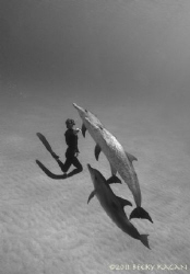 Freediving with friends by Becky Kagan