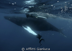 big..... by Afflitti Gianluca