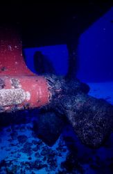 Dive Prop - C52 in Cozumel is great dive. You can safely ... by Michael Shope