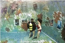 Underwater exibition... by Sergiy Glushchenko