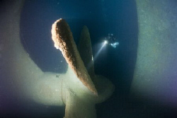 wreck Haven-propeller at 80 mt by Miro Polensek
