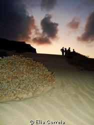 Sea dunes by the nightfall! by Elia Correia