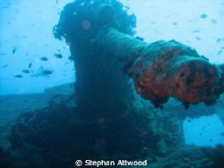 Anti aircraft Gun on the Thistlegorm wreck. by Stephan Attwood