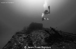Monochrome Mauritius Underwater by Jean-Yves Bignoux