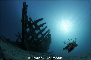 natural light by Patrick Neumann