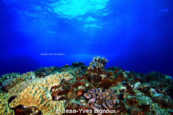 Confiti Bay Mauritius 9metres by Jean-Yves Bignoux