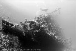 Carnatic, Straits of Gubal N'E of Shaduan Island, Red Sea... by Dan Ashkenasi