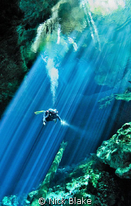 """""""Points of Light"""" An amazing dive in Taj Maha Cenote, Me... by Nick Blake"""