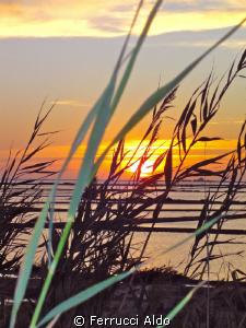 Sunset on factory of marine salt on Mothia Marsala TP Italy by Ferrucci Aldo