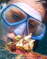 Everyone loves to see a Froggy :) Downbelow Adik Reef TAR... by Richard Swann