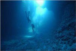 Sea Cavern, Blue Holes Palau, Micronesia. Nikon D-100 , 1... by Catherine Landa