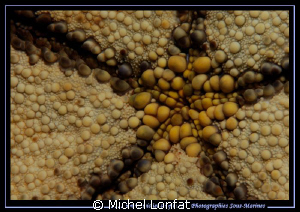 Patterns in the water's of Lembeh Strait.... :O) by Michel Lonfat