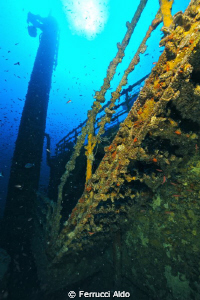 Photos take on Milford Haven wreck near Genoa. I used my... by Ferrucci Aldo