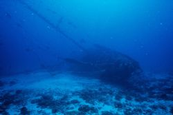 Scuttled yacht - Swains Reef, GBR Australia