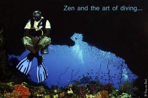 Zen and the art of diving... by Dray Van Beeck