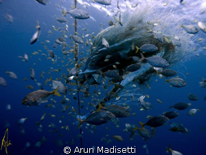 Out on the FAD. 5 miles out, 3 miles of water beneath...... by Arun Madisetti