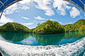 The beautiful trip back from Jellyfish Lake, Palau. by Larissa Roorda