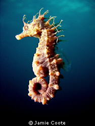 """Moving on""