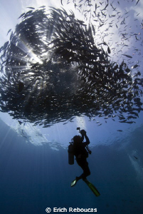 Photographer and schooling jacks at Sipadan by Erich Reboucas