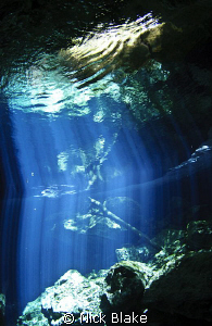 Light beams in Taj Maha Cenote, Mexico. by Nick Blake