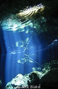 Light beams in Taj Maha Cenote, Mexico. by Nick Blake