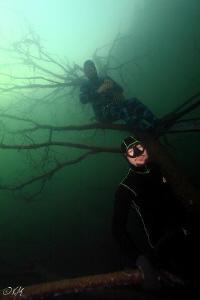 freedivers on the tree by Veronika Matějková