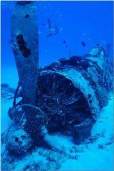 WW II Corsair Bomber, Hawaii Kai,Oahu. Crashed after eng... by Catherine Landa