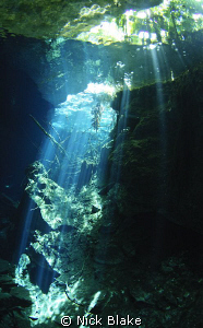 Sunbeams in Ponderosa Cenote, Yucatan, Mexico. by Nick Blake