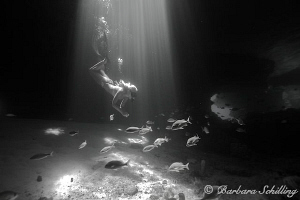 Skin Diver exploring Thunderball Caves by Barbara Schilling