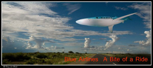 Blue airlines...a bite of a ride... by Dray Van Beeck