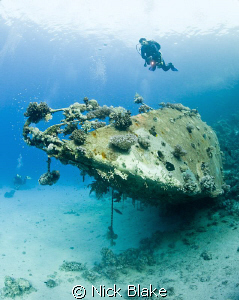 Diver over yacht wreck, Red Sea South by Nick Blake