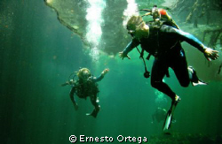"""This picture is taken in a """"Cenote"""" Cenotes are very fam... by Ernesto Ortega"""