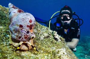 Triton & Diver by Rico Besserdich