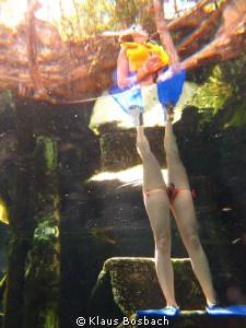Strange creatures come to our Cenotes by Klaus Bosbach