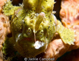 Going fishing :)
