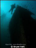 Coopers Light wreck - arguably one of the best wreck dive... by Bryan Hart