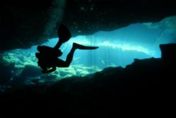 At the mouth of a Cenote called Ponderosa, Mexico. Gin cl... by Steve Baillie