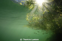 Gosausee , D200 by Thomas Lueken