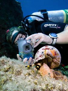 Underwater photographer @ work ;-) by Rico Besserdich
