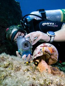 Underwater photographer @ work ;-) by Rico Besserdich