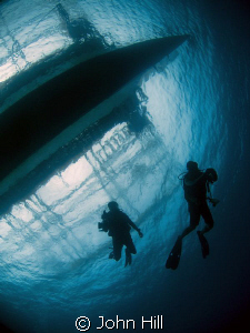 Playing with a new toy.  Under the dive boat, Apo Island,... by John Hill